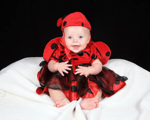 lady bug costume, halloween, baby girl costume, child halloween costume, infant halloween costume,