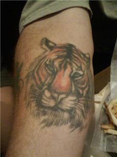 Tatuagens tigres no braço