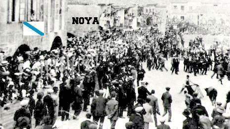 NOIA TOROS