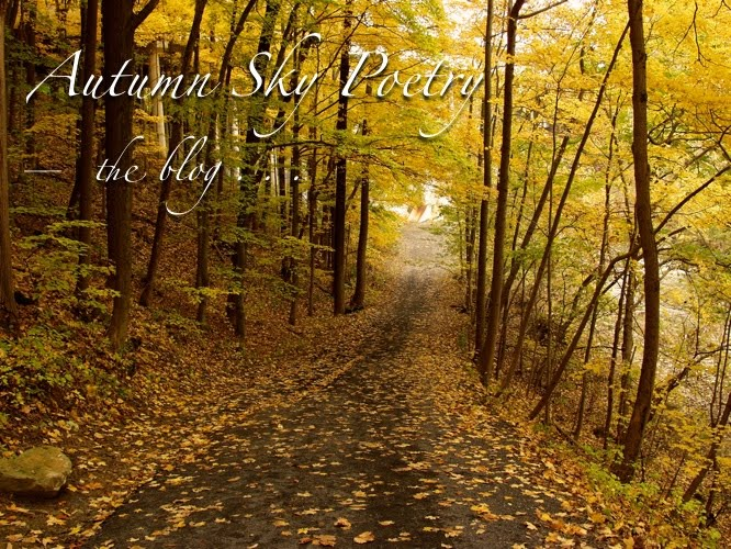Autumn Sky Poetry—the blog