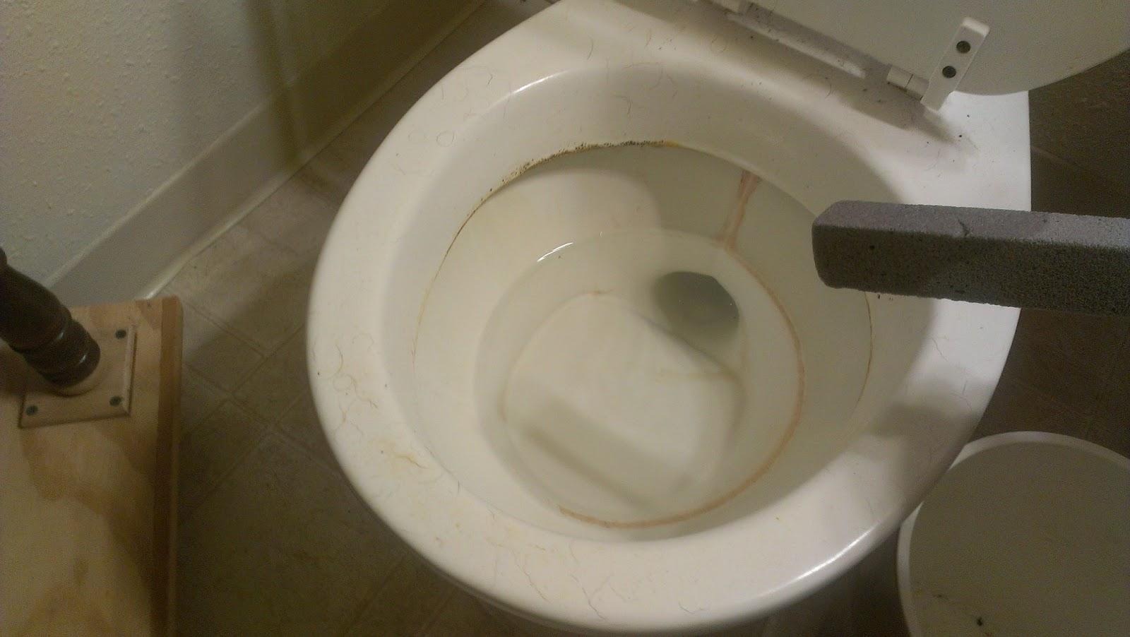 Daily Vitamin B Scrub Out Toilet Bowl Stains