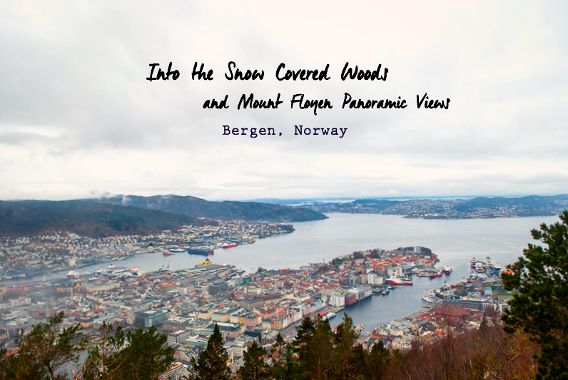 View from the top of Mount Floyen in bergen