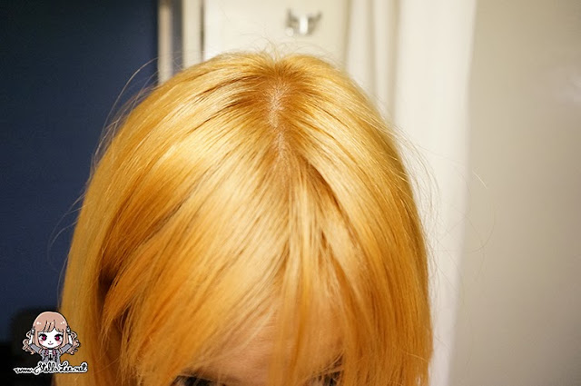 Freshlight Foam Hair Dye in Berry Ash