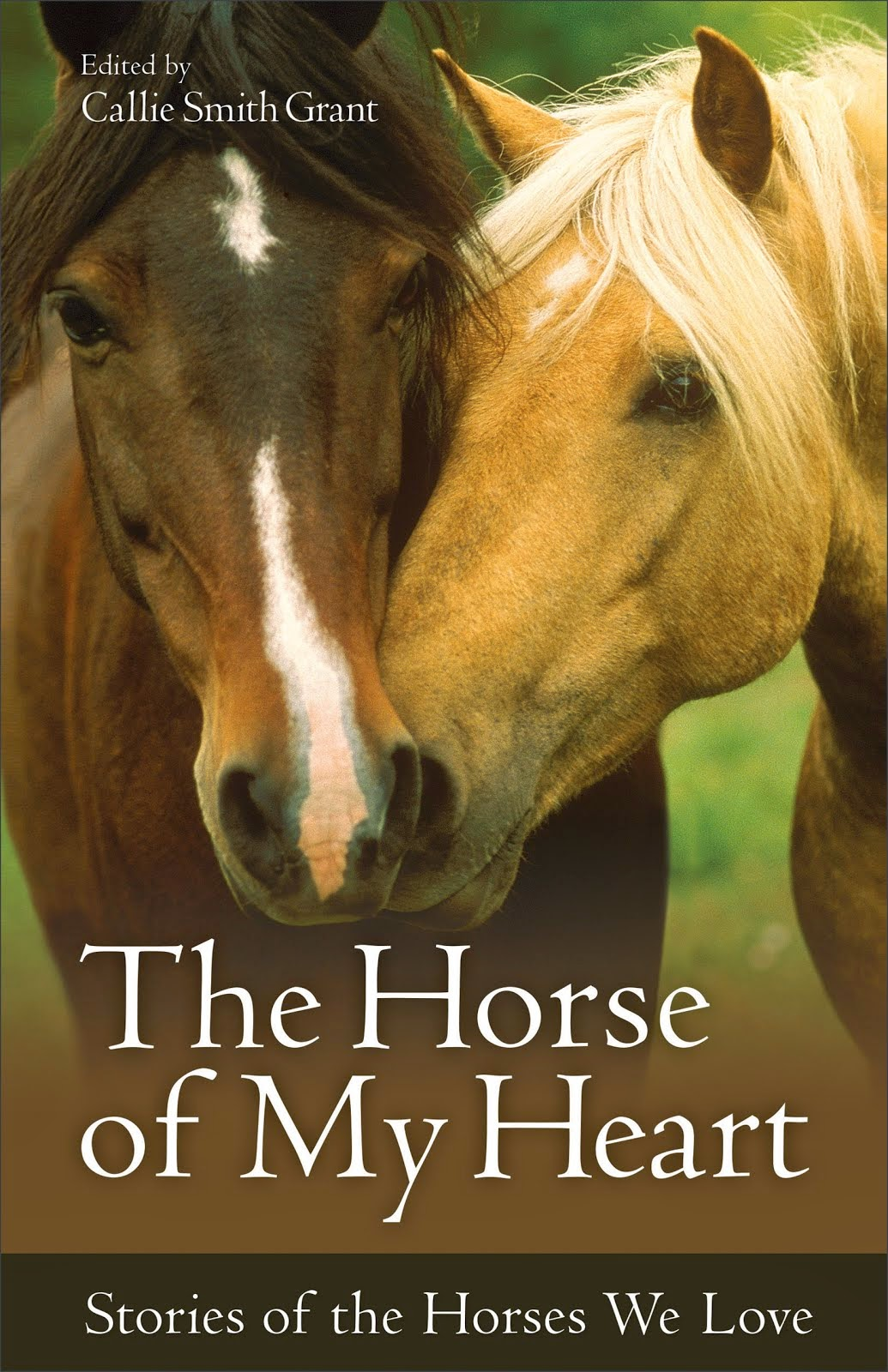 Horse of My Heart anthology containing my story: Soul Therapy