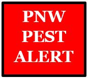 PNW Pest Alert Network