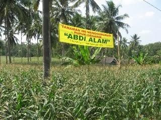 Menggunakan Kompos Abdi Alam