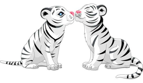 Kissing Tigers