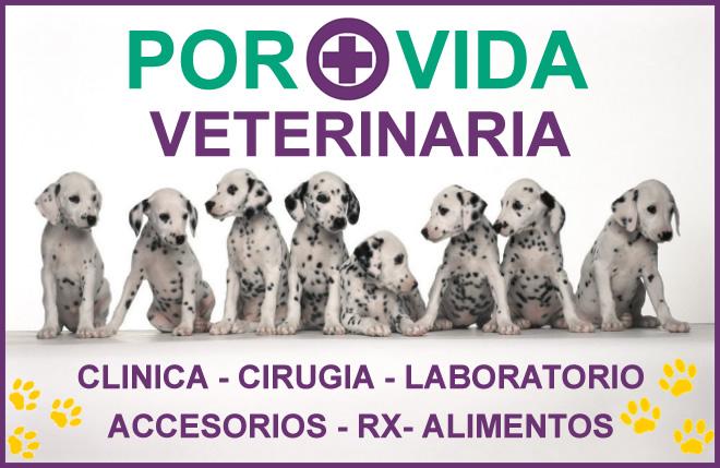 Por + Vida Veterinaría