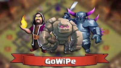 GoWiPe