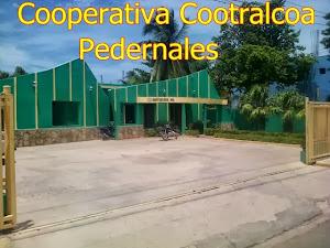 COOPERATIVA COOTRALCOA