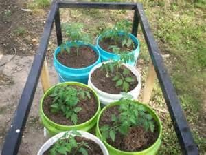 Self watering container garden thesurvivalcache for Gardening 5 gallon bucket