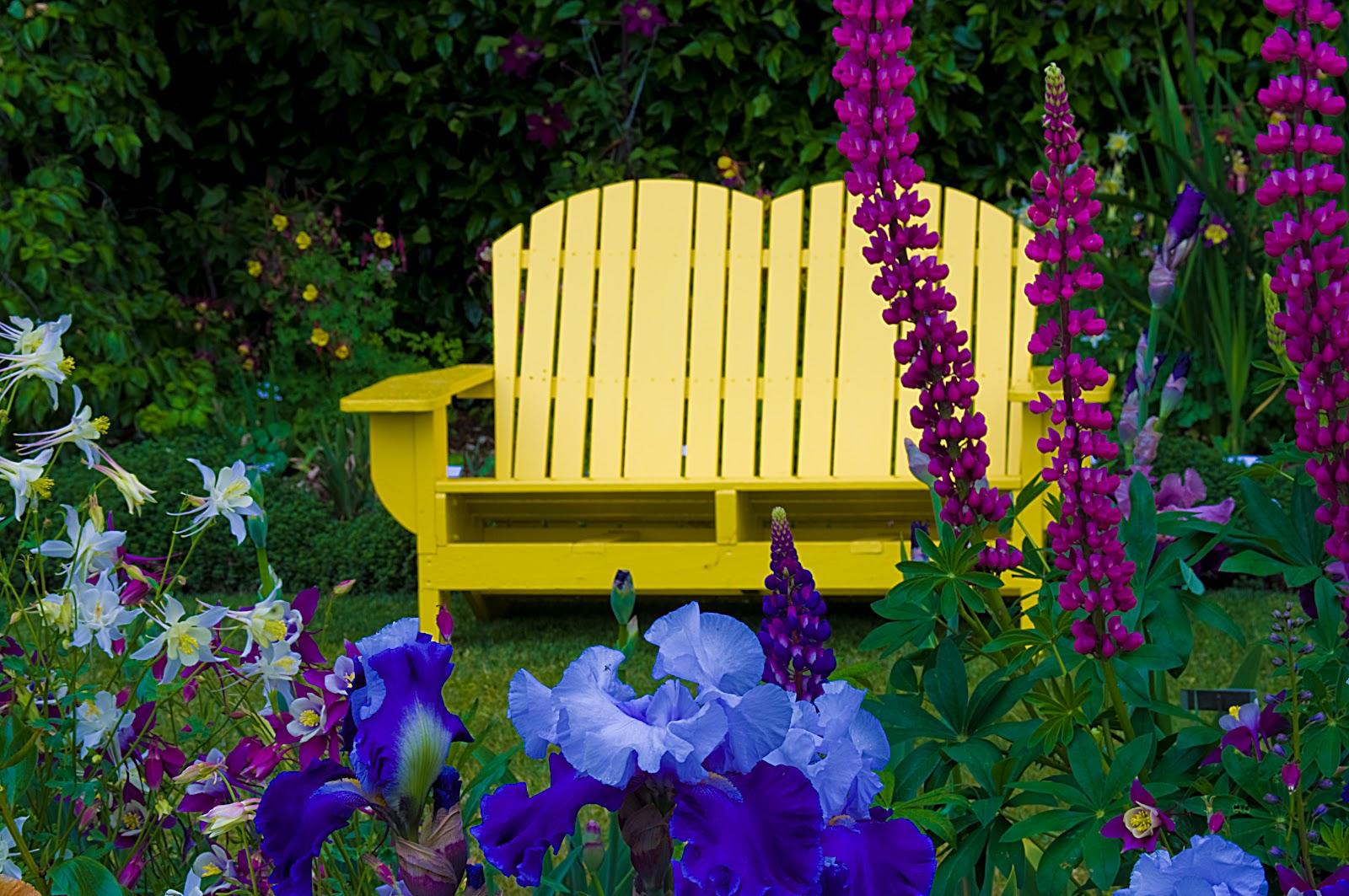 Thom Zehrfeld Photography Cool Flowers At Schreiner 39 S