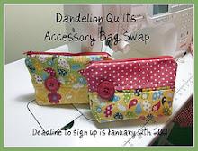 Accessory Bag Swap