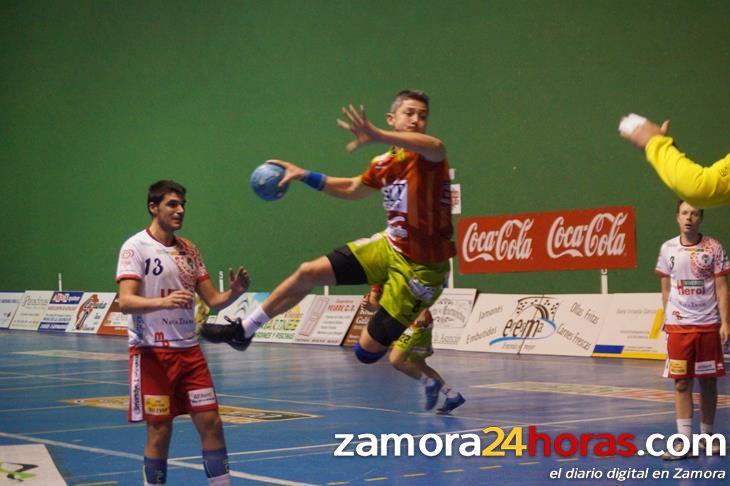 Noticias balonmano zamora un punto mas for Viveros en zamora