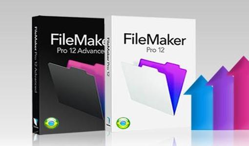 Boxware anuncia nova politica para comercialização do File Maker Pro 12