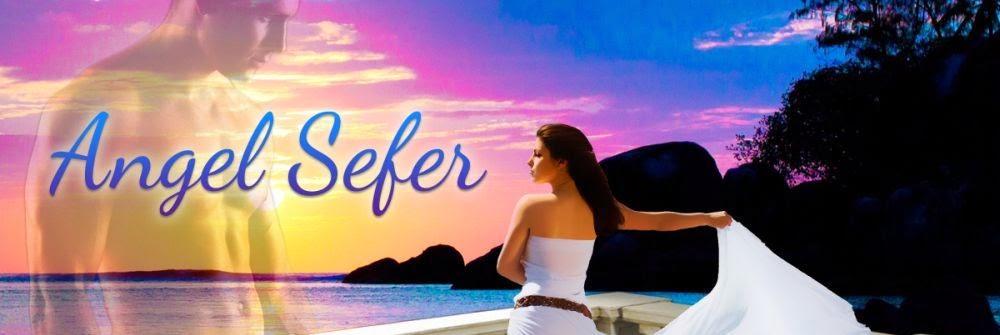 Angel Sefer's blog