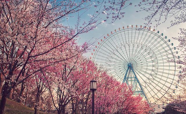 Tempozan Ferris Wheel