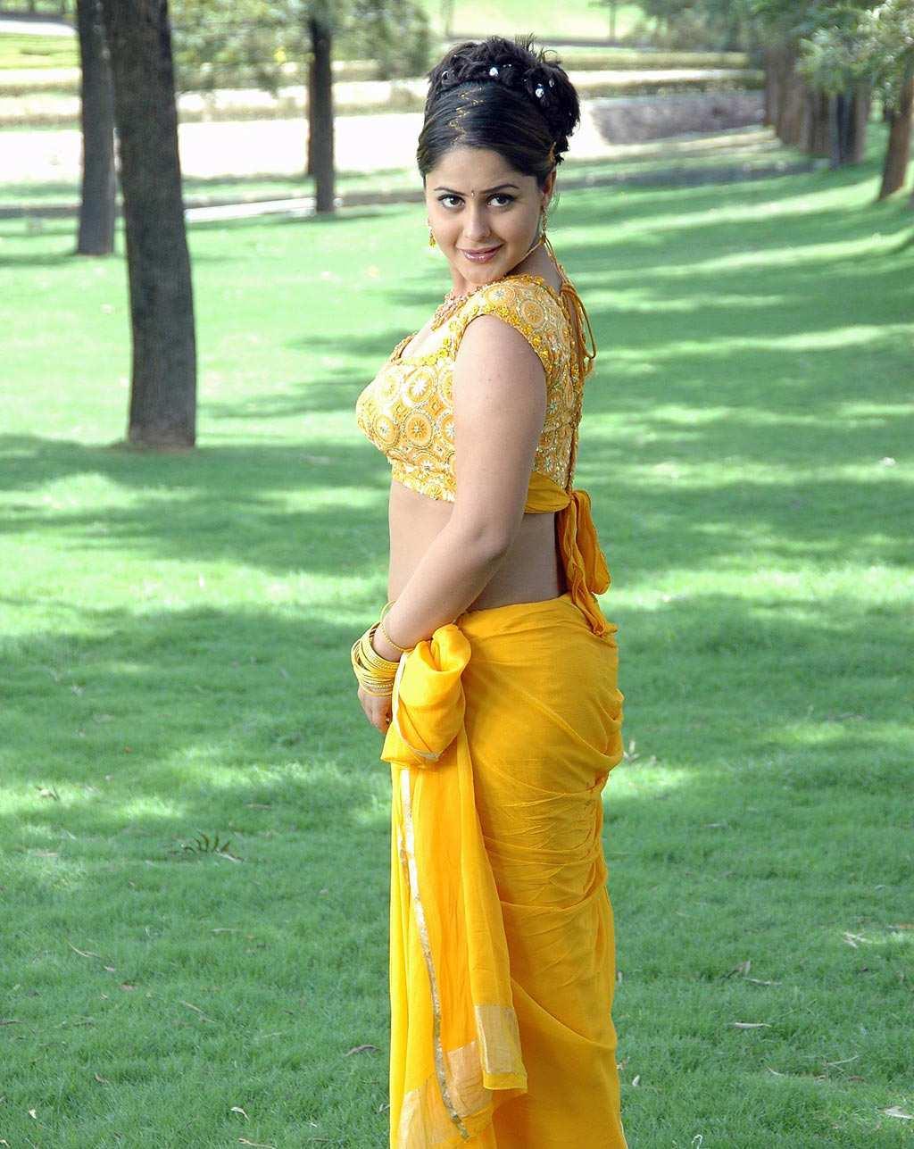 http://1.bp.blogspot.com/-tFAjQykWz4A/T0nm_WhUEmI/AAAAAAAAAeo/BhBjOF3bn5E/s1600/actress-farzana-yellow-saree-navel-show_actressinsareephotos_blogspot_com_228.jpg