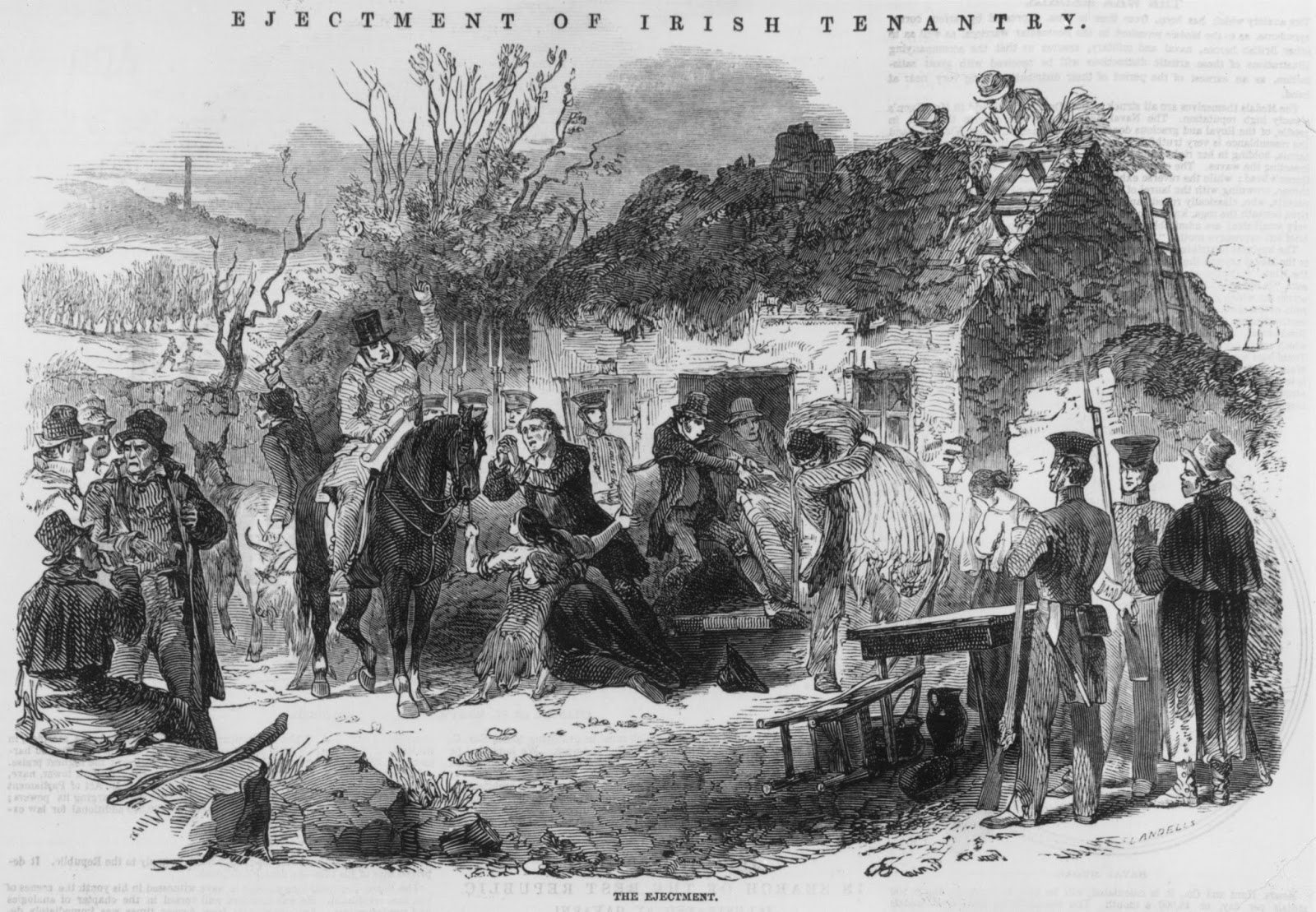 the role of the british government in the irish potato famine 1845 1850 Start studying the irish famine, 1843  of livestock was transported to britain between 1845 and 1850  put equal blame on the british government and irish.