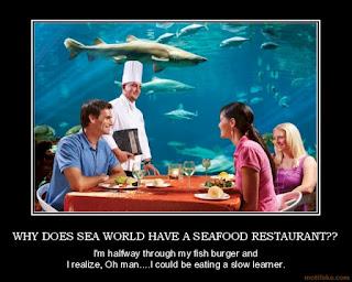 Sea World slammed for selling seafood