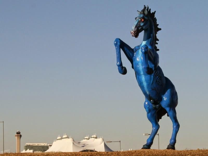 Aeroporto Denver Cavallo : Lettori come stelle presentazione quot la nave di cristallo