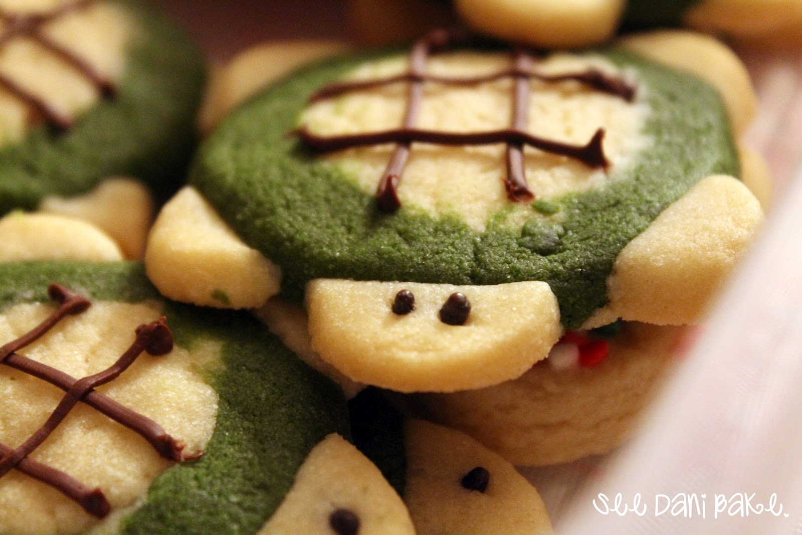 Turtle Cookies | See Dani Bake.