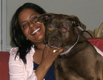 the truth about pit bulls so you think you know a pit