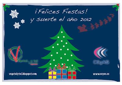 ¡Felices fiestas! y suerte en el año 2012.