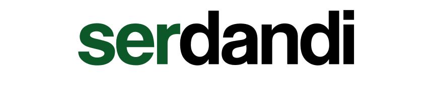 SerDandi
