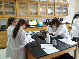 bio lab toxonamy and classification The purpose of this week's lab is to: review classification of organisms  taxonomy  is more general than  classification and phylogenetics.