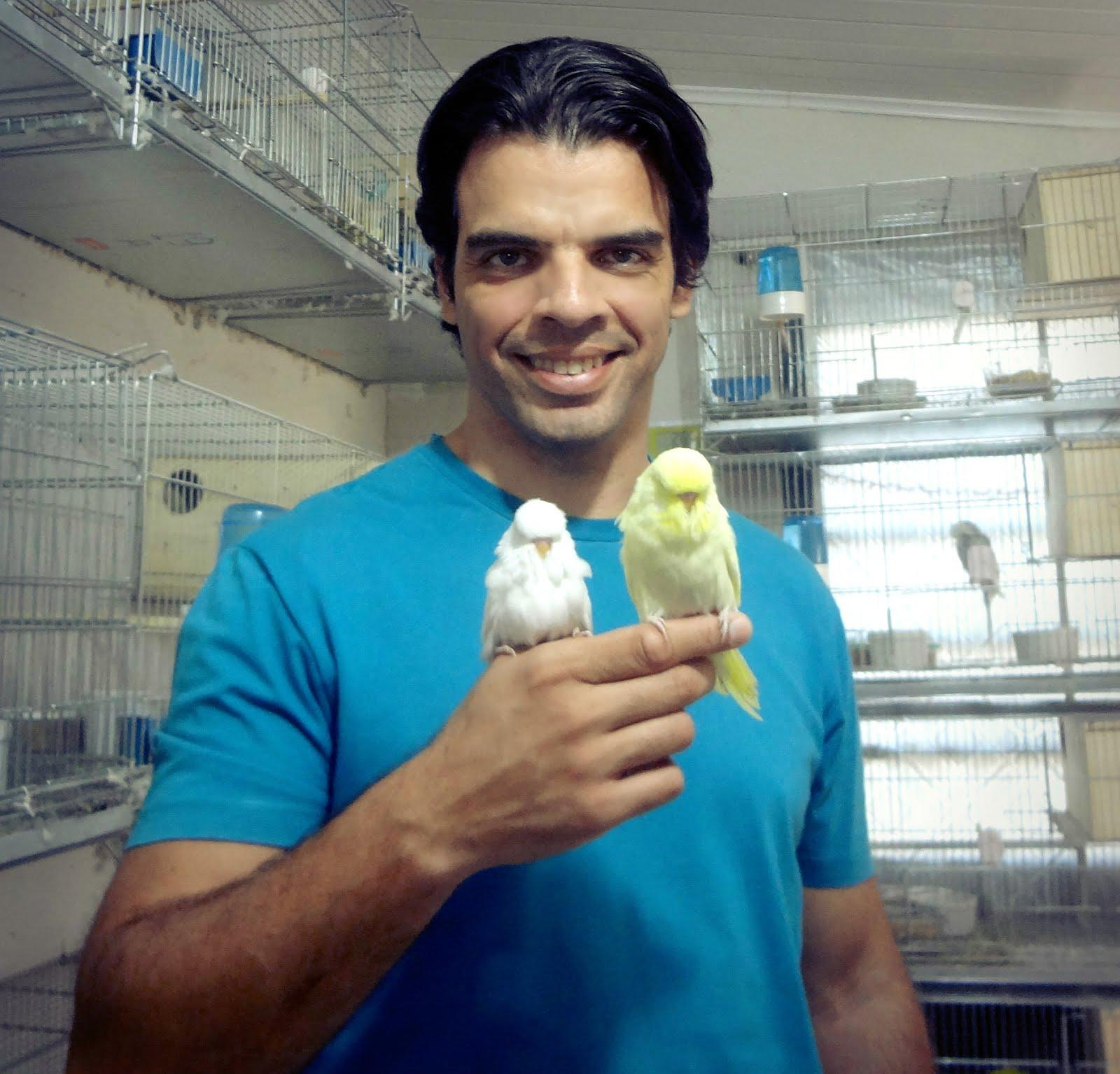 O CRIADOR - Luiz Américo