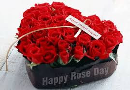 Happy-Rose-Day-2016-Images-Pictures-Status-for-Facebook-Whatsapp-Twitter-9