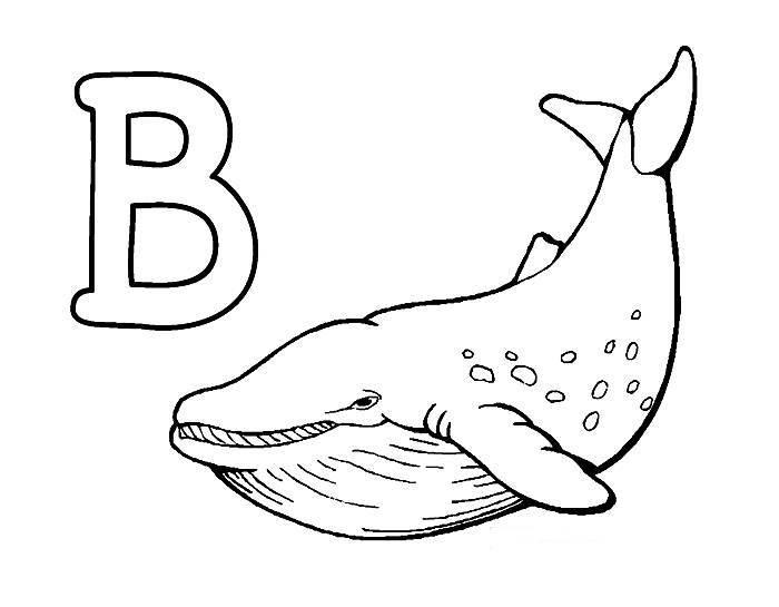 Desenhos Preto e Branco Letras Do Alfabeto Letra B Colorir