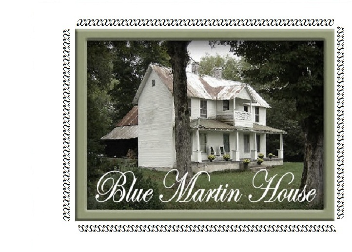 blue martin house