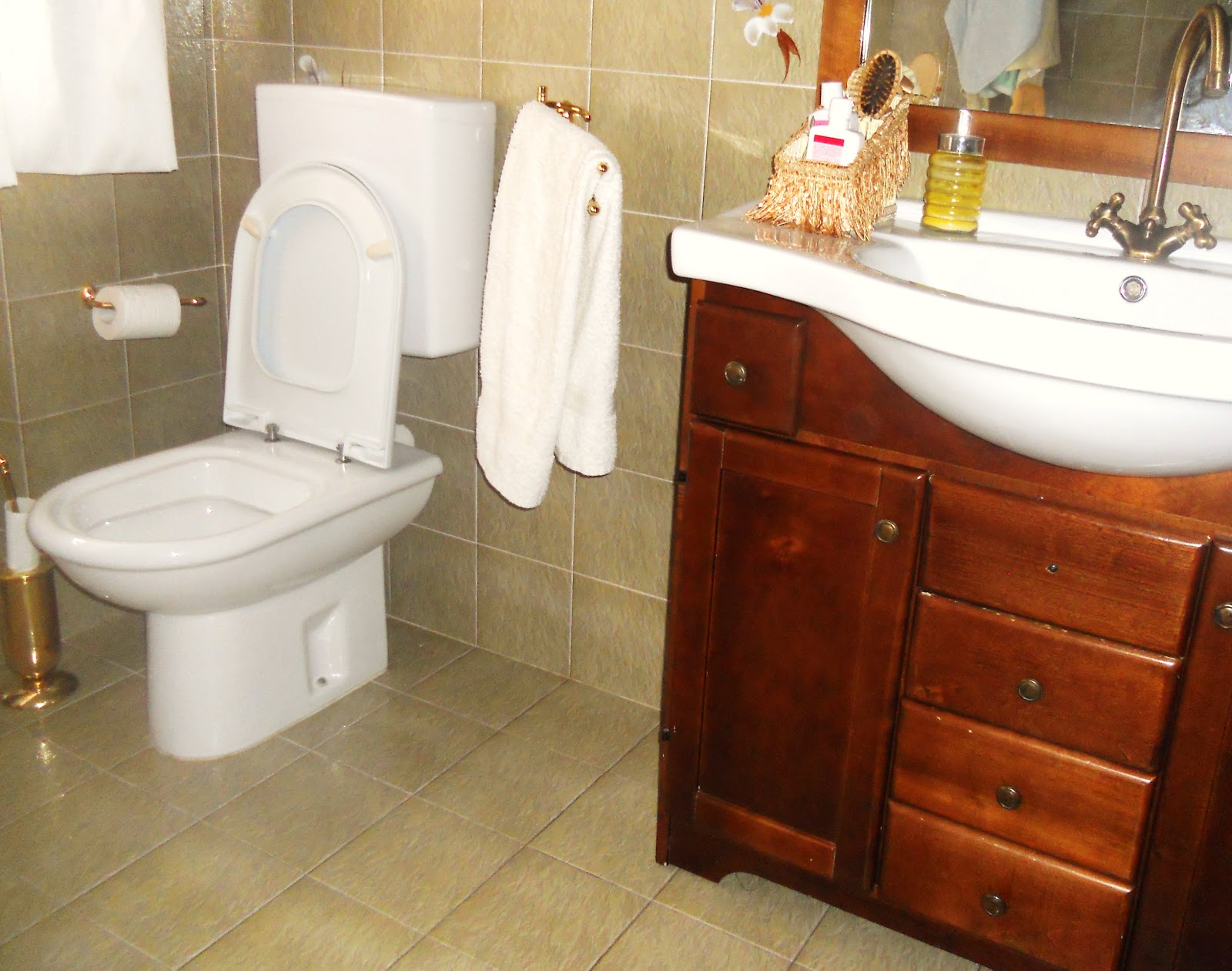 Eco pulizie del bagno maghella di casa - Mia suocera in bagno ...