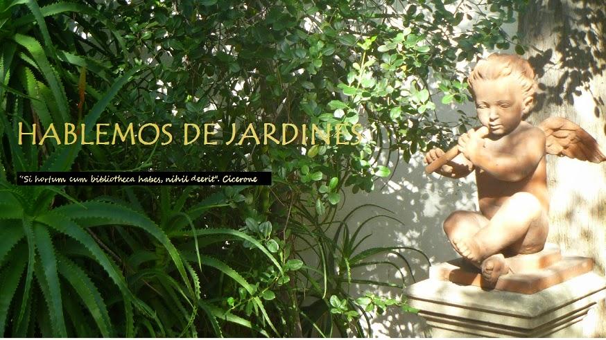 HABLEMOS DE JARDINES
