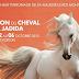 معرض الفرس بالجديدة  يحبس أنفاس زواره مطلع أكتوبر 2013
