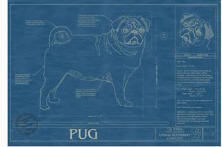 A bowl of noodles its in the blueprint pet blueprint animal blueprint co 110 the 18 by 24 inch cat and dog portraits are created in a 1950s blueprint style with schematics and design notes malvernweather Image collections