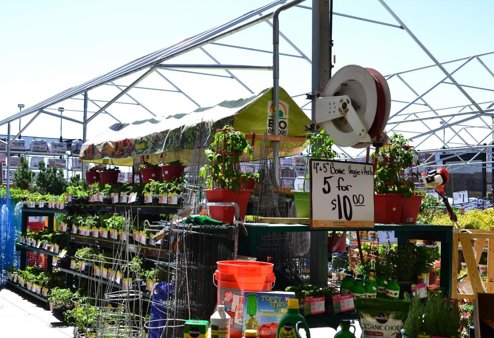 Online Gartencenter Online Gartencenter Ihr Garten Fachcenter Im Internet Urban Garden Center