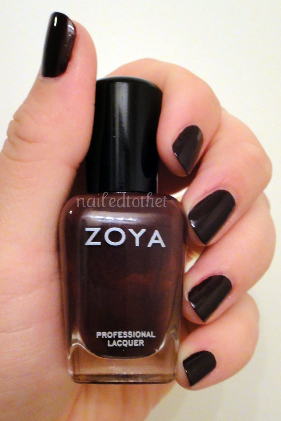 Nailed to the T: Zoya Anja & Nail-Venturous Rustic Remains