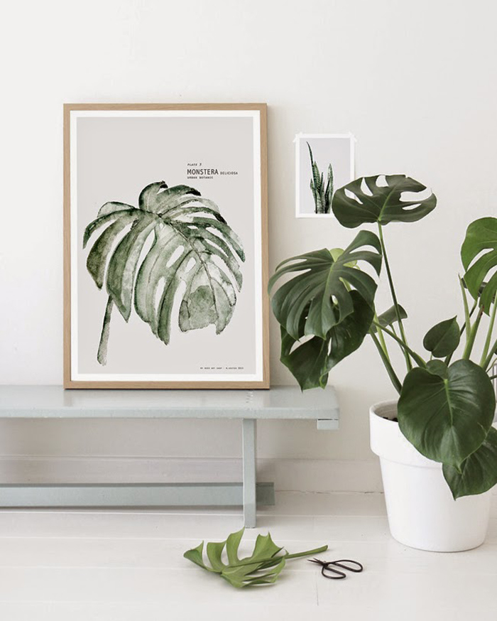Botanic Watercolor painting