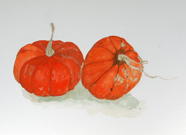golden nugget pumpkin drawing
