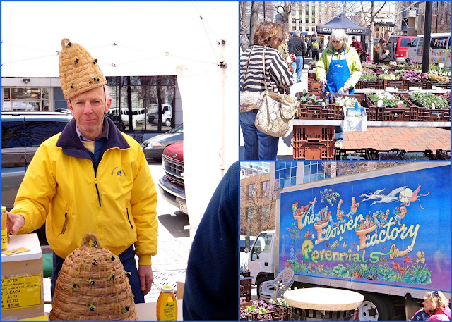 Bee man at Madison farmer's market