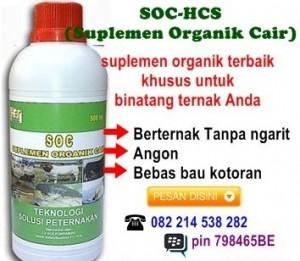 SOC - HCS