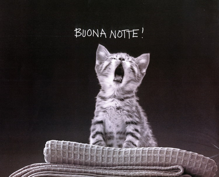 Asocial network buona notte for Buonanotte cartoni