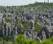 South China Karst Heritage Site