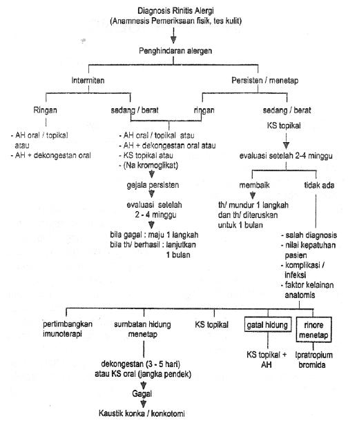 jenis kortikosteroid oral