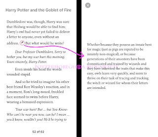 HP e il Calice di Fuoco: annotazione sui gufi