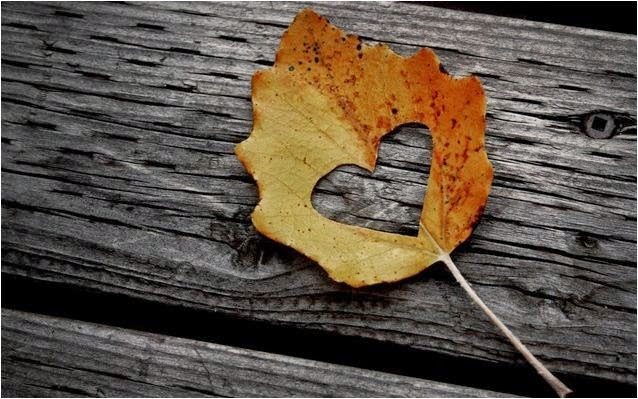 feuilles de l'automne et d'amour