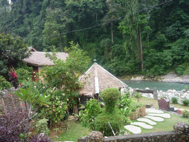 Bukit lawang jungle trekking for Jungle furniture white river